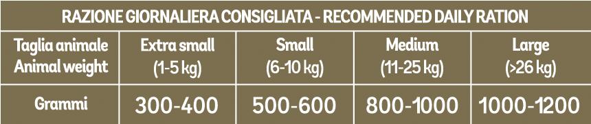 junior - AGNELLO-RISO